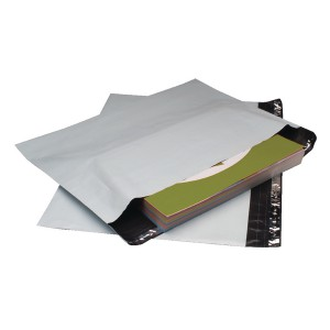 GoSecure C4 Envelope Ex Strong Pk100