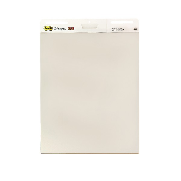 Meeting Chart Self Adhesive Repositionable 30 Sheets A1 [Pack 2]