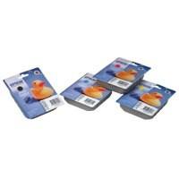 Epson T0452 Inkjet Cartridge DURABrite Parasol Page Life 250pp Cyan Ref C13T04524010