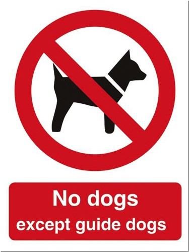 Stewart Superior No Dogs Except Guide Dogs Self Adhesive Sign Ref P091SAV