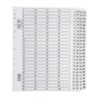Image for 5 Star Index 230 micron Card with Clear Mylar Tabs 1-100 A4 White