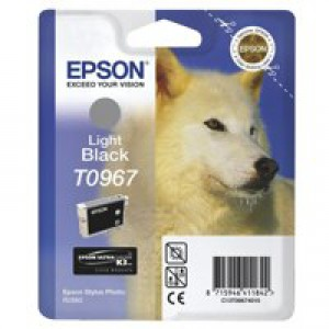 Epson R2880 Ink Cartridge Light Black C13T09674010