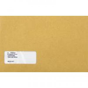 Sage Compatible Wage Envelope Pack of 1000 SE47